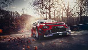 WRC-Glossary-9_308x176